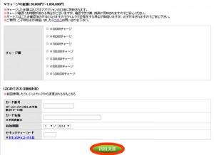 ミリオネアオプション-クレジットカード決済画面